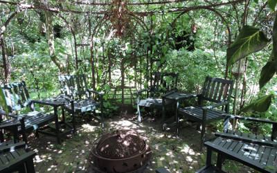 """Tuinhulp dagen in Mantinge, """"Bezield"""" tuinieren  in November en December"""