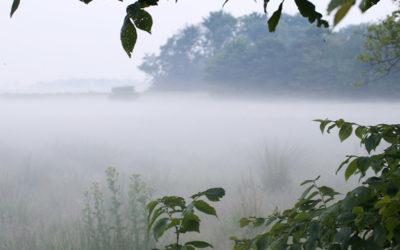 Stilte- en inspiratiedag – Veelomvattendheid
